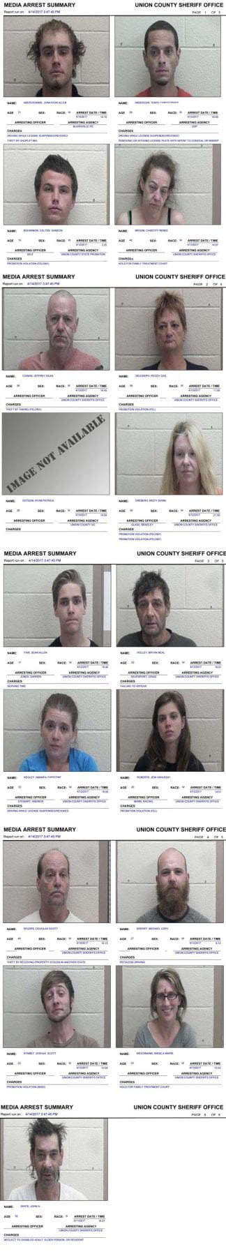 union county sheriff's office arrest report Archives